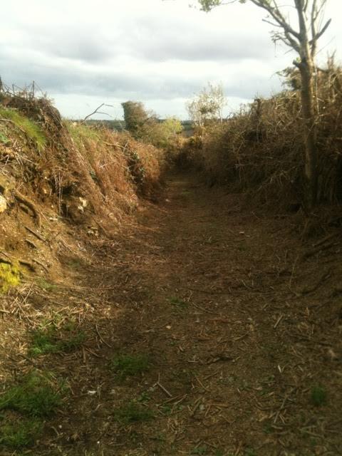 Bessy Breen's Lane cleared